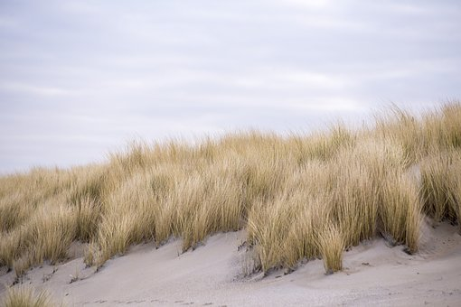dunes-2141473__340
